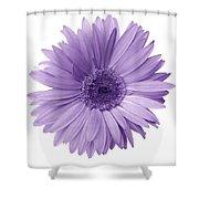 5552c6 Shower Curtain