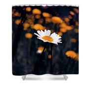 A Daisy Alone Shower Curtain