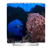 A Diver Looks On At A Giant Barrel Shower Curtain