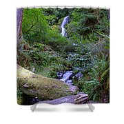 A Small Waterfall Shower Curtain