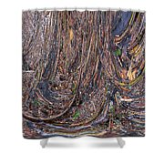 Abstarct Flood Shower Curtain