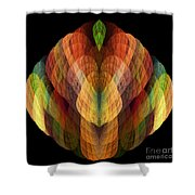 Abstract 202 Shower Curtain
