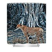 Alert Cheetah Shower Curtain by Darcy Michaelchuk