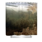 Algae In A Frozen Pond Shower Curtain by Ted Kinsman