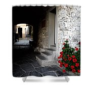 Alley With Arches Shower Curtain