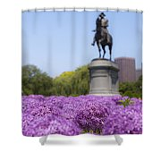 Allium Flower At The Boston Common Shower Curtain