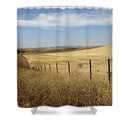 Along The Line  Shower Curtain