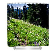 Alpine Meadow Vii At Mount Rainier Shower Curtain