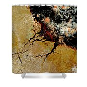 Amazon River In Northern Brazil Shower Curtain