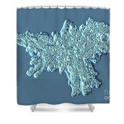 Amoeba Proteus Shower Curtain