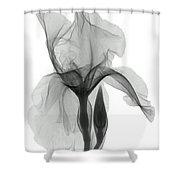 An X-ray Of An Iris Flower Shower Curtain