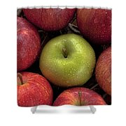 Apples Shower Curtain by Joana Kruse