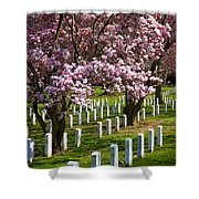 Arlington Cherry Trees Shower Curtain
