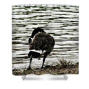 At The Waters Edge Shower Curtain