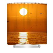 Auburn Sky Shower Curtain