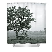 August In England Shower Curtain