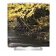 Autumn Flow Shower Curtain
