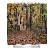 Autumn Path Shower Curtain