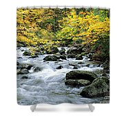 Autumn Stream 3 Shower Curtain