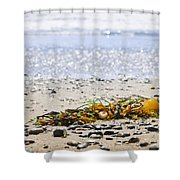 Beach Detail On Pacific Ocean Coast Shower Curtain by Elena Elisseeva