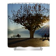 Benches And Trees Shower Curtain