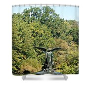 Birdbath Of Central Park Shower Curtain