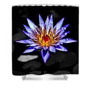Black Pond Lilly Shower Curtain