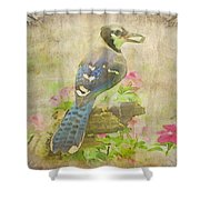 Blue Jay With Texture II Shower Curtain