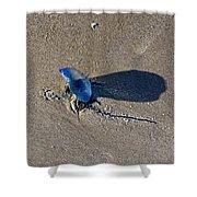 Blue On The Beach Shower Curtain
