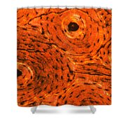 Bone Tissue Shower Curtain