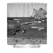 Bowfiddle Rock Shower Curtain