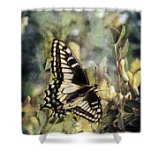 Butterfly On Yellow Flowers Shower Curtain