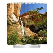 Calf Creek Falls Canyon Shower Curtain