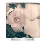 Camellia Shower Curtain by Joana Kruse