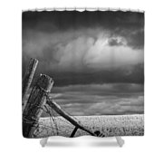 Canola Field In Southern Alberta  Shower Curtain