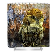 Cavern Watch Shower Curtain