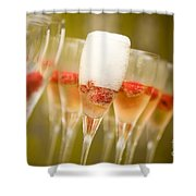 Champagne Shower Curtain by Kati Molin