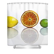 Citrus Fruits Shower Curtain by Joana Kruse