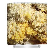 Close-up Of Yellow Salt Crystals Shower Curtain