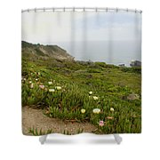 Coastal View Mist Shower Curtain