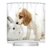 Cocker Spaniel And Rabbit Shower Curtain