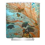 Collare Butterflyfish Shower Curtain