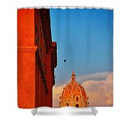 Corona Shower Curtain