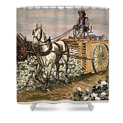 Cotton Harvester, 1886 Shower Curtain