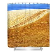 Crops, Oil Seed Rape Shower Curtain