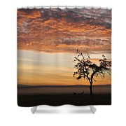 Crowned Cranes At Sunrise Shower Curtain