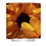 Cutleaf Tiger Eye Shower Curtain