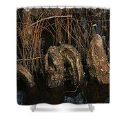 Cypress Knee Monster Shower Curtain