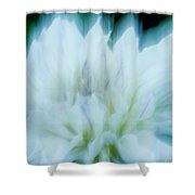 Dancing Angels - 1 Shower Curtain