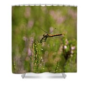 Darter 1 Shower Curtain